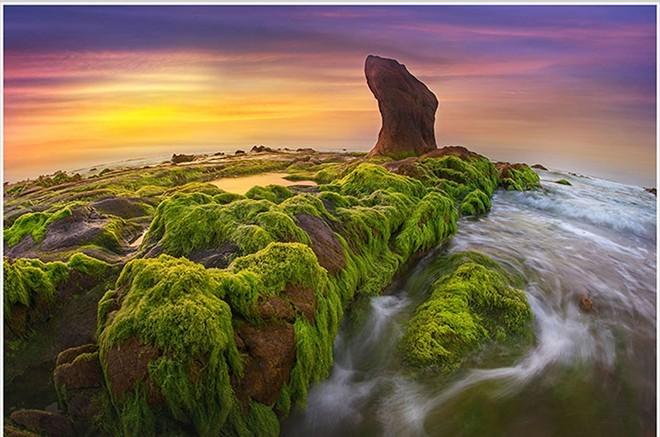 Rêu xanh cổ thạch tại Bình Thuận
