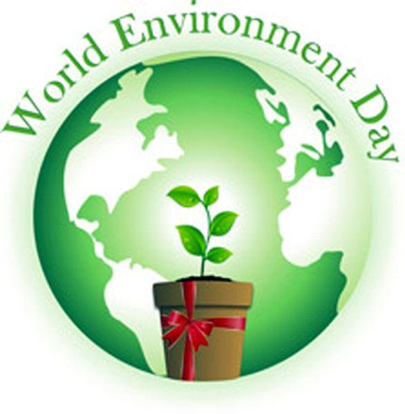Việt Nam tham gia Ngày môi trường thế giới từ năm nào?