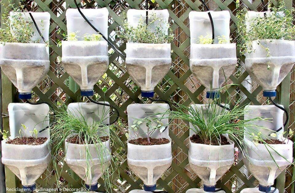 Thủ thuật tái chế can nhựa thành bình trồng cây