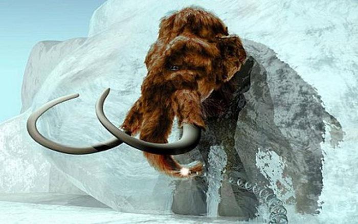 Lý do khiến voi mammoth tuyệt chủng