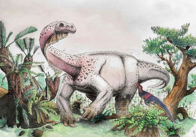 Sự tiến hoá của khủng long
