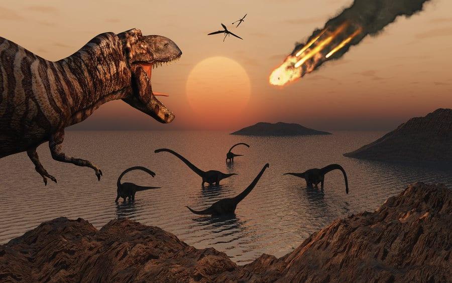 Sự va chạm của tiểu hành tinh khiến khủng long bị tuyệt chủng
