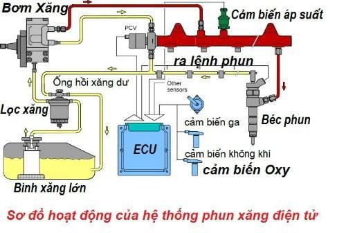 Sơ đồ hoạt động của hệ thống phun xăng điện tử