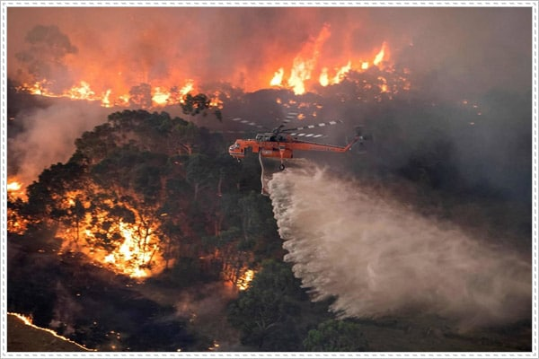 Thảm họa cháy rừng ở Úc chưa có dấu hiệu dừng lại