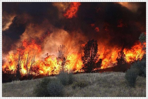 Cháy rừng khủng khiếp tại Nga gây ra nhiều thiệt hại