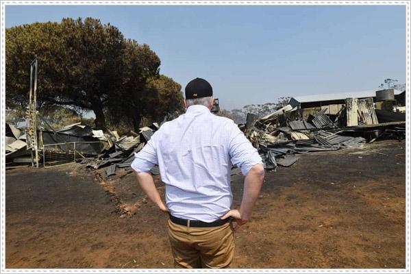 Hậu quả thảm khốc của cháy rừng