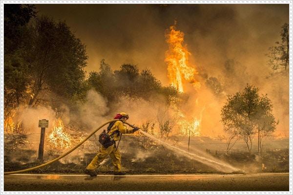 Các nguyên nhân gây nên cháy rừng