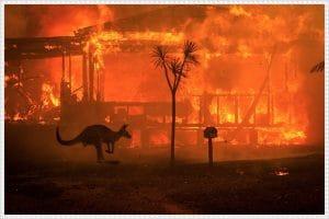Cháy rừng ở Úc - thảm họa tồi tệ nhất nhiều thập kỷ qua