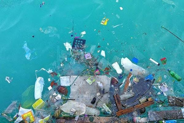 Ô nhiễm đại dương gây ra bệnh nguy hiểm cho con người